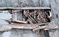 Hele oude dingen - Archeologie